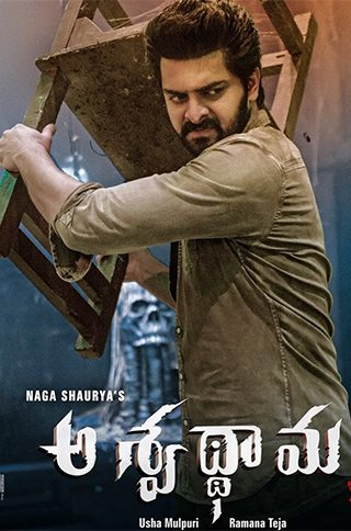 Aswathama-Telugu-Movie-Streaming-on-Sun-NXT,--Release-Date-27th-March