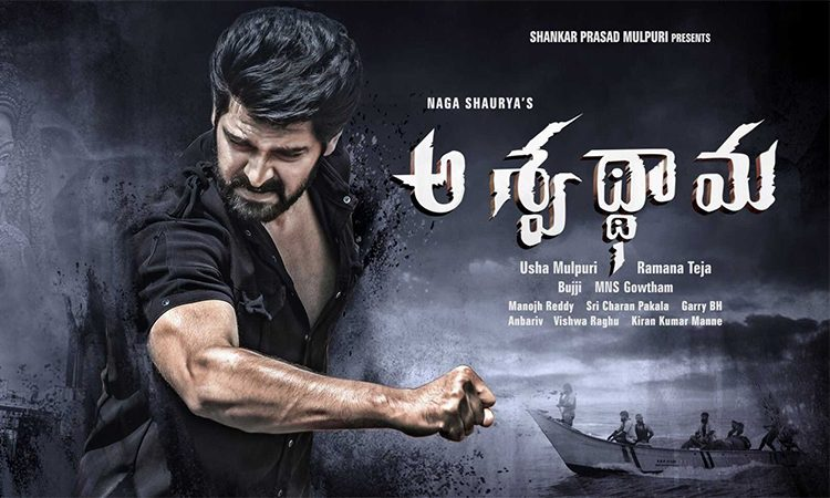 Aswathama-Telugu-Movie-Streaming-on-Sun-NXT,-Release-Date-27th-March
