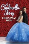 A Cinderella Story: Christmas Wish Movie Streaming Online Watch on Netflix