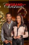 A Husband for Christmas Movie Streaming Online Watch on Tubi