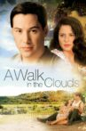 A Walk in the Clouds Movie Streaming Online Watch on Tata Sky