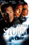 After the Storm Movie Streaming Online Watch on Tubi
