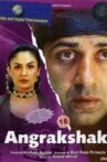 Angrakshak Movie Streaming Online Watch on Amazon