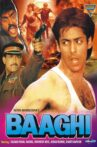 Baaghi: A Rebel for Love Movie Streaming Online Watch on Zee5