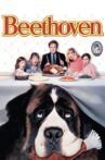 Beethoven Movie Streaming Online Watch on Google Play, Youtube