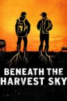 Beneath the Harvest Sky Movie Streaming Online Watch on Tubi