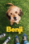 Benji Movie Streaming Online Watch on Netflix
