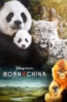 Born in China Movie Streaming Online Watch on Disney Plus Hotstar