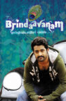Brindaavanam Movie Streaming Online Watch on MX Player, Sun NXT, Voot, Zee5