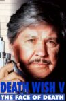 Death Wish V: The Face of Death Movie Streaming Online Watch on Tubi