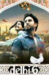 Delhi-6 Movie Streaming Online Watch on Google Play, Netflix , Youtube, iTunes