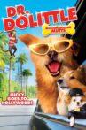 Dr. Dolittle: Million Dollar Mutts Movie Streaming Online Watch on Disney Plus Hotstar