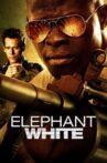Elephant White Movie Streaming Online Watch on Tubi