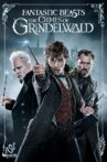 Fantastic Beasts: The Crimes of Grindelwald Movie Streaming Online Watch on Book My Show, Google Play, Hungama, Netflix , Tata Sky , Youtube, iTunes