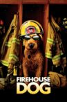 Firehouse Dog Movie Streaming Online Watch on Amazon