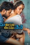 Ninu Veedani Needanu Nene Movie Streaming Online Watch on Amazon
