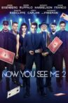 Now You See Me 2 Movie Streaming Online Watch on Google Play, Netflix , Youtube, iTunes