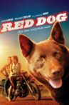 Red Dog Movie Streaming Online Watch on Tubi