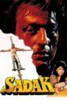 Sadak Movie Streaming Online Watch on Google Play, Youtube, iTunes