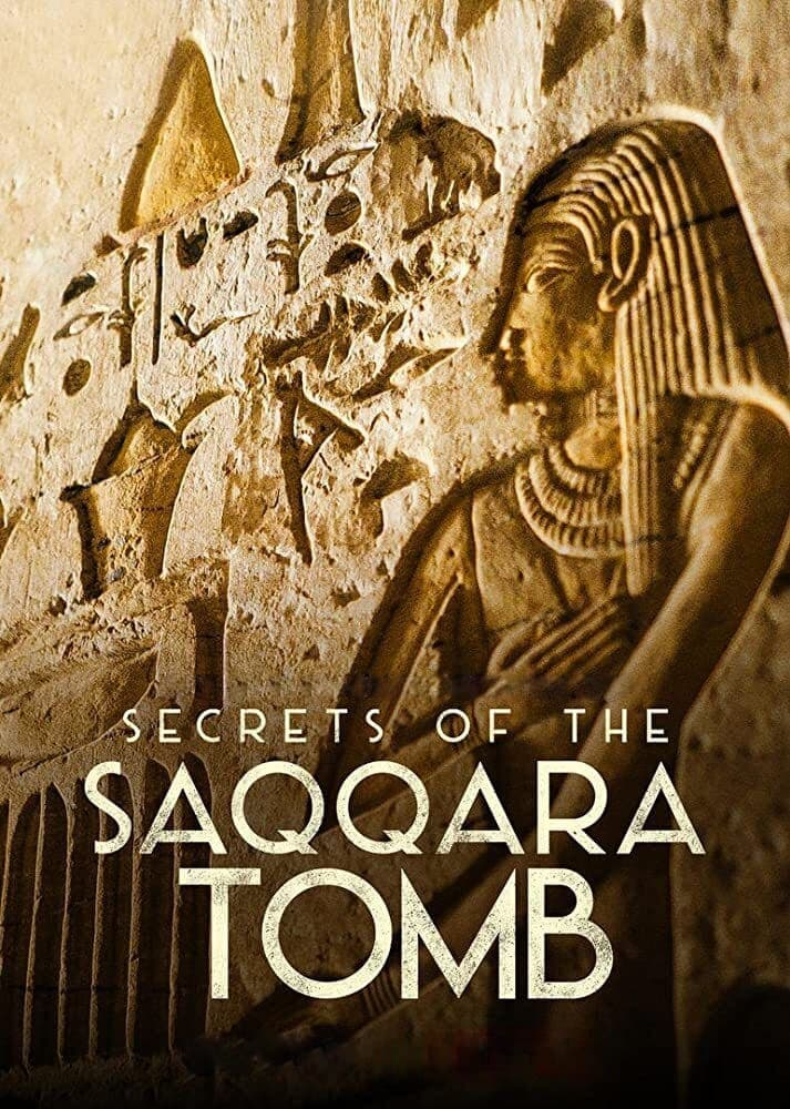 Secrets of the Saqqara Tomb Movie Streaming Online Watch on Netflix