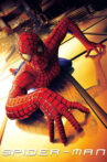 Spider-Man Movie Streaming Online Watch on Amazon, Google Play, Sony LIV, Youtube, iTunes