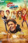 Tera Mera Tedha Medha Movie Streaming Online Watch on Shemaroo Me