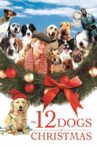 The 12 Dogs of Christmas Movie Streaming Online Watch on Google Play, Tubi, Youtube, iTunes