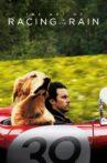 The Art of Racing in the Rain Movie Streaming Online Watch on Disney Plus Hotstar
