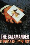 The Salamander Movie Streaming Online Watch on Tubi