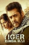Tiger Zinda Hai Movie Streaming Online Watch on Amazon, Google Play, Youtube, iTunes