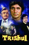 Trishul Movie Streaming Online Watch on Zee5