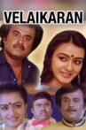Velaikkaran Movie Streaming Online Watch on ErosNow, Jio Cinema, MX Player