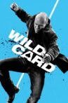 Wild Card Movie Streaming Online Watch on Google Play, Netflix , Youtube, iTunes