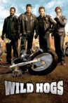 Wild Hogs Movie Streaming Online Watch on Google Play, Youtube, iTunes