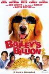 Bailey's Billion$ Movie Streaming Online