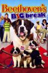 Beethoven's Big Break Movie Streaming Online