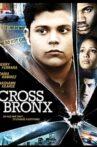 Cross Bronx Movie Streaming Online