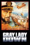 Gray Lady Down Movie Streaming Online