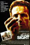 Hide in Plain Sight Movie Streaming Online