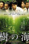 Jyukai: The Sea of Trees Behind Mt. Fuji Movie Streaming Online