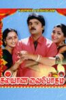 Kalyana Vaibhogam Movie Streaming Online