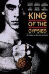King of the Gypsies Movie Streaming Online