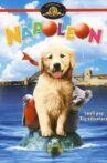 Napoleon Movie Streaming Online