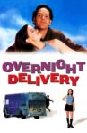 Overnight Delivery Movie Streaming Online