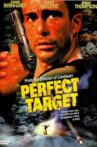 Perfect Target Movie Streaming Online