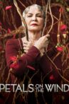 Petals on the Wind Movie Streaming Online
