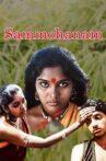 Sammohanam Movie Streaming Online