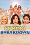 Spring Breakdown Movie Streaming Online