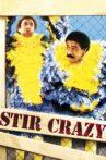 Stir Crazy Movie Streaming Online