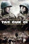 Tae Guk Gi: The Brotherhood of War Movie Streaming Online
